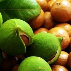 Макадамії горіха олія нераф.