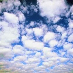 Озон запашка