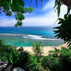 Сад над океаном отдушка