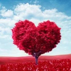 Бесконечная любовь отдушка